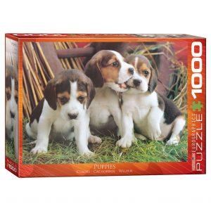 173 – 1000pce Puzzles (103 Des) 6000-4054 Puppies