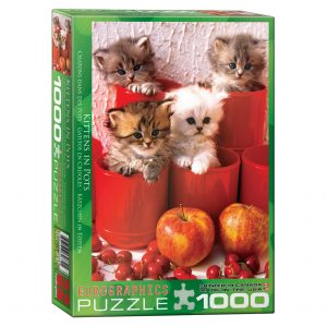 173 – 1000pce Puzzles 6000-4674 Kittens In Pot