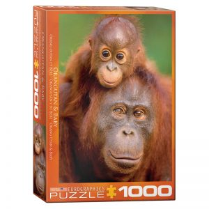 173 – 1000pce Puzzles 6000-0638 Orangutan Baby