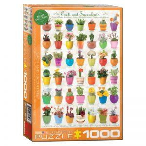 173 – 1000pce Puzzles 6000-0654 Cacti Succulents